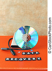 Data recovery - Broken DVD disc brought for data recovery