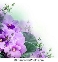 Bouquet, Printemps, violettes, floral, fond