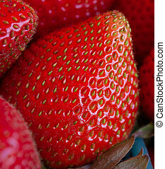 Strawberry close-up at the Strawberry Festival in Delaplane,...