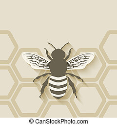 bee honeycomb background - vector illustration eps 10