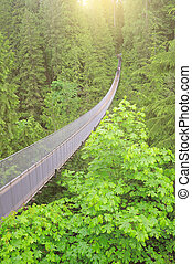 Capilano bridge. North Vancouver. Canada.