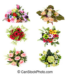Flower collection isolated