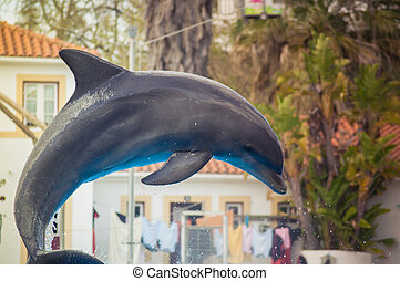 Dolphin in Lisbon Zoo - Dolphinarium, dolphins show in...