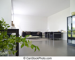 Livingroom with indoor plant - modern private living and...