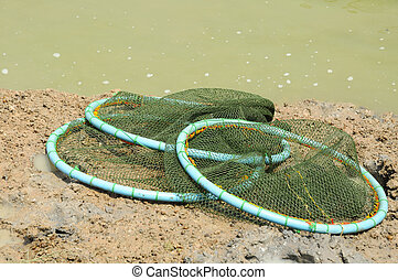 Netting for catch shrimp and fish