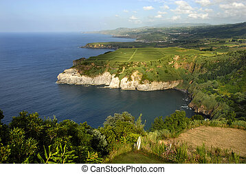 azores coastal cliff at sao miguel island