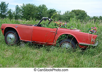 Vintage Red - Old vintage car used as a planter in field.
