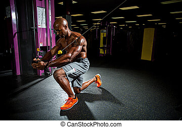 Cable Machine Weight Training - Muscular body builder...