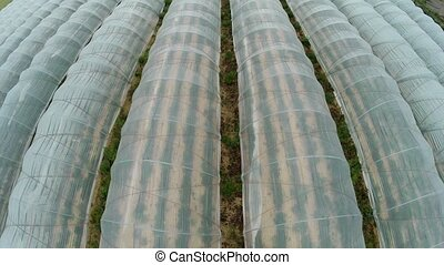 Aerial of greenhouses - Aerial video footage of a field with...