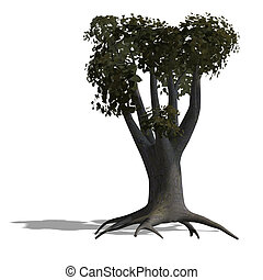 cotton tree - rendering of a tree with shadow and lipping...