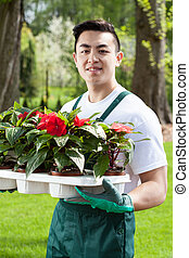 Asian gardener with plants in green garden