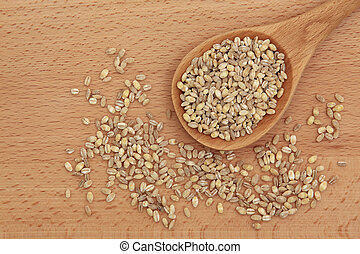 Pearl Barley - Pearl barley in a wooden spoon over beech...