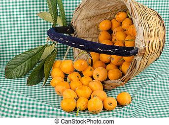 枇杷, 收穫, 籃子