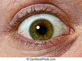 eye of fear - close up image of scary green eys background