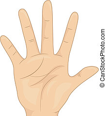 Hand Count Five - Illustration Featuring an Open Palm...