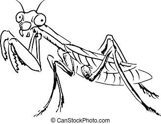 mantis - hand drawn, sketch, cartoon illustration of mantis