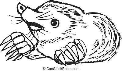mole - hand drawn, sketch, cartoon illustration of mole