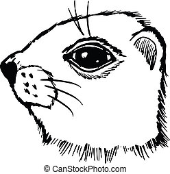 gopher - hand drawn, sketch, cartoon illustration of gopher