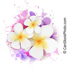 Abstract background with plumeria flowers
