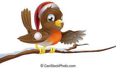 Christmas Robin in santa hat