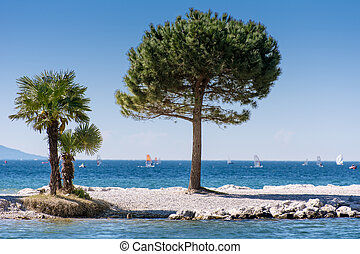 Trees at Lago di Garda Lakefront - Trees at the lakefront of...
