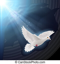 White dove in sunlight - White dove flying in sunlight...