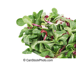 Spinach and radicchio rosso mix. Isolated on a white...