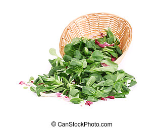 Spinach and radicchio rosso mix on wicker basket. Isolated...