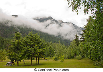 Mount Robson Provincial Park - Rest area along Yellowhead...