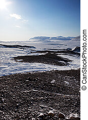 Barren Winter Landscape - A cold and barren winter landscape...