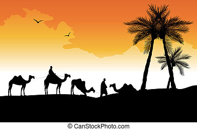 silhouette of camels  - camel caravan in the desert