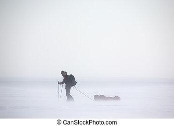 ártico, expedição