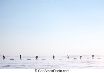Arctic Expedition - A group of adventurers on a arctic...