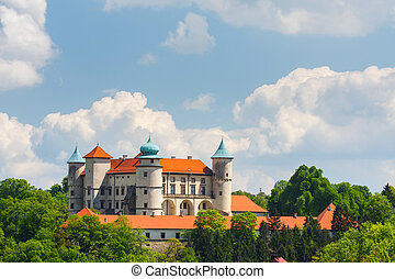 View of Nowy Wisnicz castle, Poland
