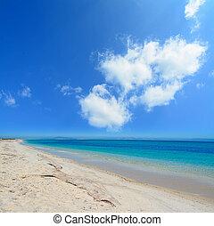 clouds in Fiume Santo - dry branch in Fiume Santo coastline,...