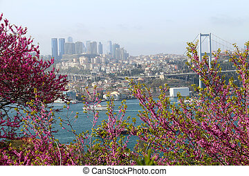 Istanbul and Bosporus Bridge View Behind the Colors