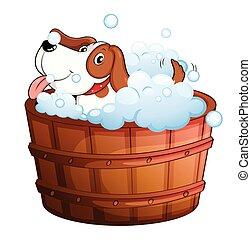 A cute puppy taking a bath