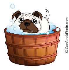 A bulldog inside the bathtub