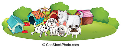 A group of adorable dogs