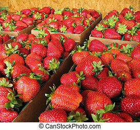 Strawberries at Farmers Market - Baskets of strawberries...