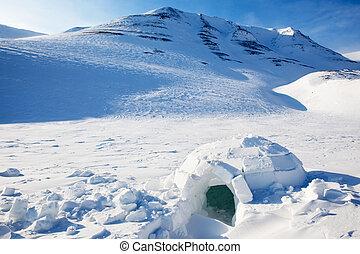 Igloo in a winter mountain setting