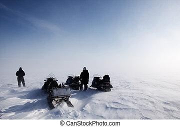 soprando, neve, paisagem