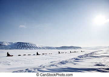 Dog Sled Expedition - A dog sled expedition across a barren...