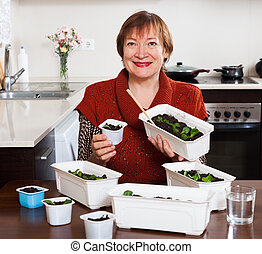 Mature woman working with seedlings in pots in home kitchen