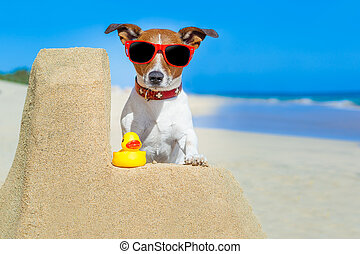 dog at the beach - dog building a sandcastle with red...