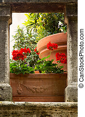 Flowers in a Tuscan village - Flowers on medieval stairs in...