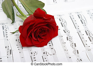 I Love Music - A red rose compliments the notes of music.