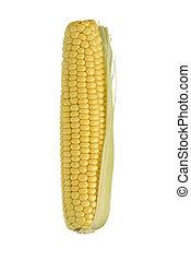 Corncob - A corncob isolated on white.