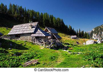 jezero - Alpine medow, Slovenia