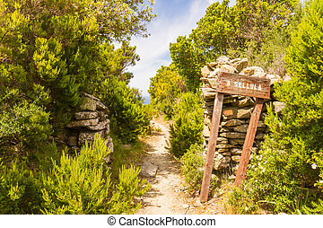 Signpost for A Sellula near Nonza in Corsica - A wooden...
